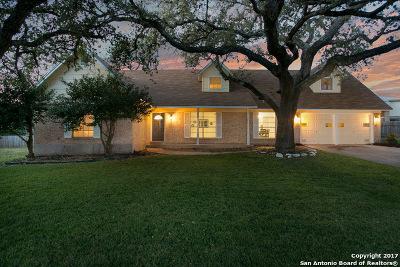 San Antonio Single Family Home New: 1131 Haltown Dr