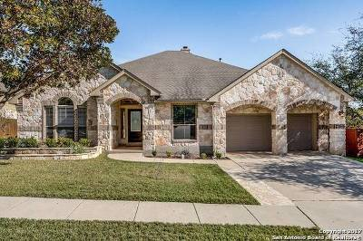 San Antonio Single Family Home New: 23616 Alpine Rdg