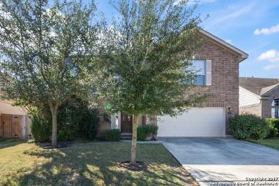 San Antonio Single Family Home New: 24315 Alamosa Fls