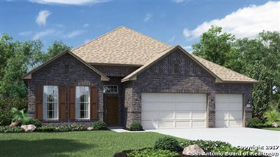 San Antonio Single Family Home New: 955 Vista Serena