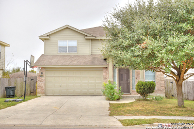 New Braunfels Single Family Home New: 227 Ibis Falls Dr