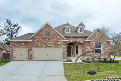 San Antonio Single Family Home New: 4502 El Bosque