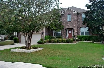 San Antonio Single Family Home New: 4510 James Bowie