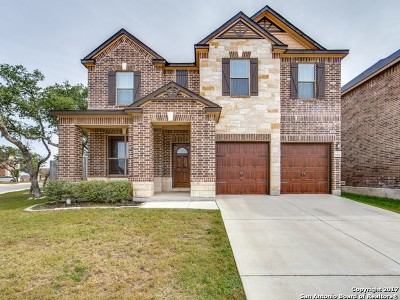 San Antonio Single Family Home New: 20222 Silver Strm