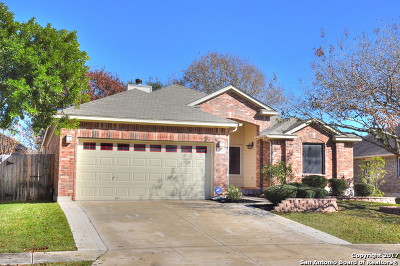 Cibolo Single Family Home New: 244 Cinnabar Trl
