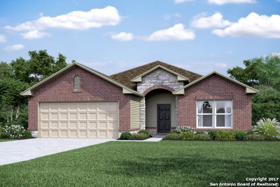 Guadalupe County Single Family Home New: 157 Beretta Path