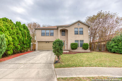 San Antonio Single Family Home New: 9210 Bowen Dr