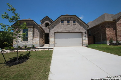 San Antonio Single Family Home For Sale: 2031 Rio Samba