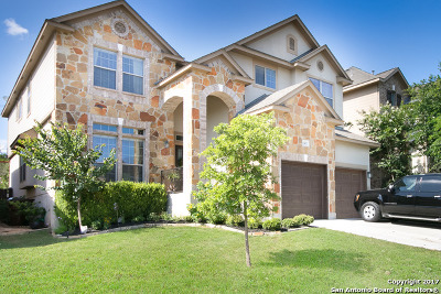 Bexar County Single Family Home New: 1407 Osprey Hts