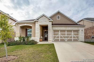 Bexar County Single Family Home New: 20123 Hillbrook Park