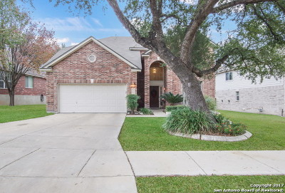 Helotes Single Family Home For Sale: 10515 Black Horse