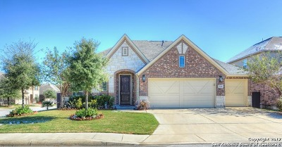 Single Family Home For Sale: 530 Rolling Grv
