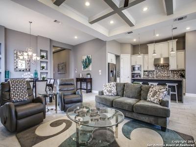 Boerne Single Family Home For Sale: 29110 Voges Ave