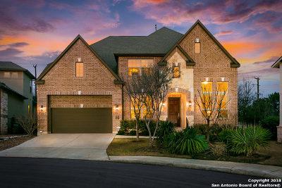 San Antonio Single Family Home For Sale: 2302 Dunmore Hl