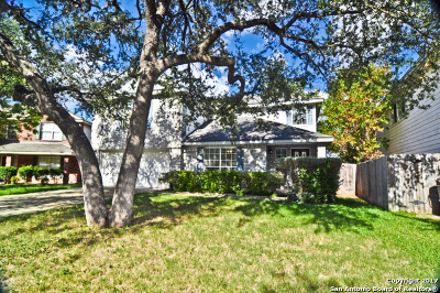 Helotes Single Family Home For Sale: 9627 Wasp Crk