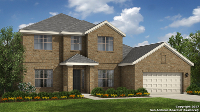 Bexar County Single Family Home For Sale: 24206 Viento Leaf