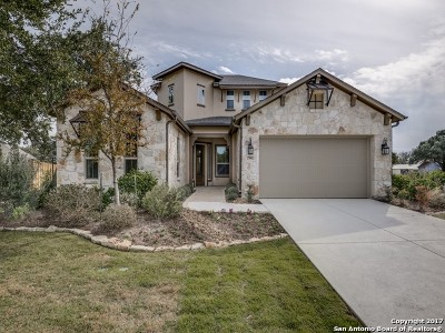 Boerne Single Family Home For Sale: 29002 Axis View