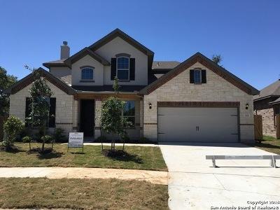 Woods Of Boerne Single Family Home For Sale: 222 Woods Of Boerne Blvd