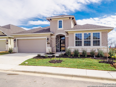 New Braunfels Single Family Home For Sale: 915 Hi Path