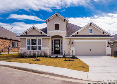 New Braunfels Single Family Home For Sale: 911 Hi Path