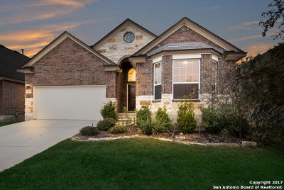 Single Family Home For Sale: 26014 Shady Acres