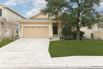 Heights At Stone Oak Single Family Home For Sale: 23618 Silver Crk