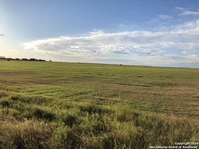 Atascosa County Farm & Ranch For Sale: 3031 Fm 536