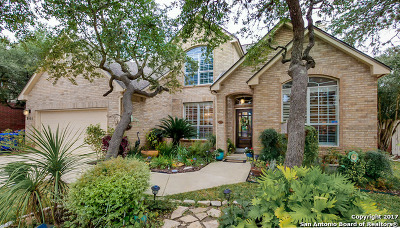 Single Family Home For Sale: 8407 Rocky Overlook