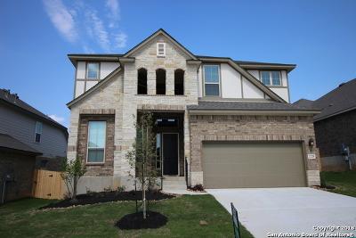 Single Family Home For Sale: 22228 Akin Doe