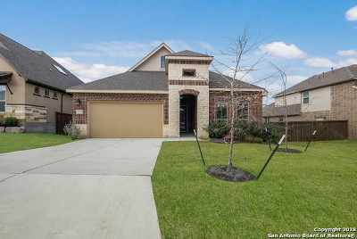San Antonio Single Family Home For Sale: 23213 Emerald Pass