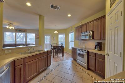 San Antonio Single Family Home For Sale: 26806 Spiral Cyn