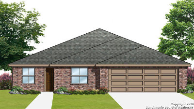 Guadalupe County Single Family Home For Sale: 1033 Dumfries Dr