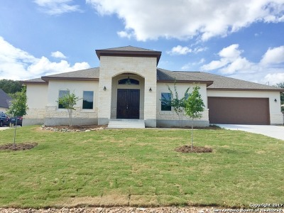 Bexar County Single Family Home For Sale: 1715 Slumber Pass