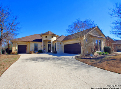 Boerne Single Family Home For Sale: 30038 Cibolo Trce