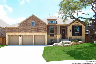 Boerne Single Family Home For Sale: 28827 Porch Swing