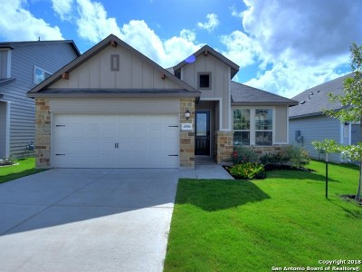 Bexar County Single Family Home For Sale: 4906 Drovers Path