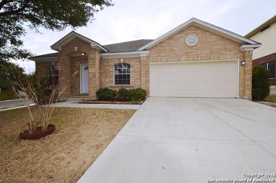 Schertz Single Family Home New: 4672 Summit Hill Dr