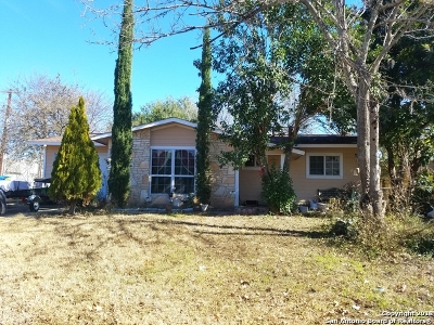 San Antonio Single Family Home For Sale: 502 Crestfield St