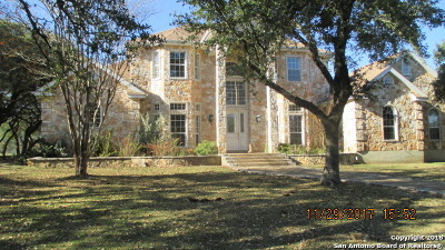 Kendall County Single Family Home For Sale: 350 Fm 1376