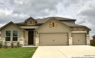 San Antonio Single Family Home For Sale: 9138 Highland Star