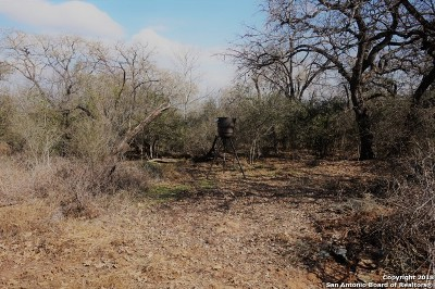 Atascosa County Residential Lots & Land For Sale: Patton Rd