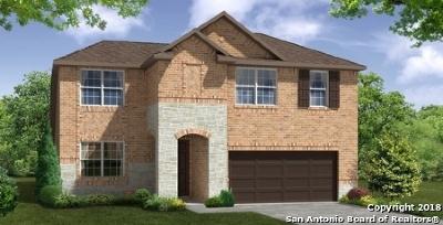 Cibolo Single Family Home New: 217 Prairie Vista