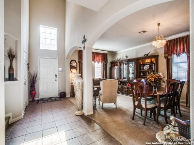 Cibolo Single Family Home For Sale: 100 Ling Ln