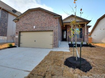 Cibolo Single Family Home Price Change: 205 Heavenly View