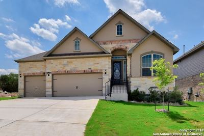 Bexar County Single Family Home For Sale: 28827 Throssel Lane