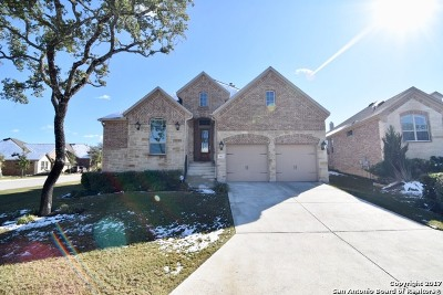 Boerne Single Family Home New: 9002 Leslies Gate
