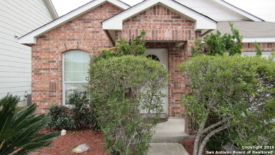 San Antonio Single Family Home New: 4206 Talavera Trl