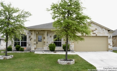 New Braunfels Single Family Home New: 942 Avery Pkwy