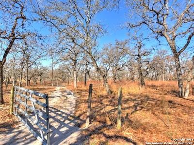 Wilson County Residential Lots & Land New: 971 T Turkey Foot Ln
