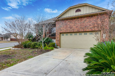 San Antonio Single Family Home For Sale: 7502 Fairlawn Dr